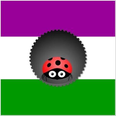 ladybird@glindr.org